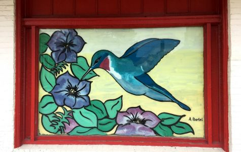 A hummingbird painted by Amy Bartel decorates the empty window of Follett's Miami Co-Op Bookstore. <em>Photograph by Julia Arwine</em>