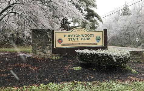 Hueston Woods, captured on an icy Thursday afternoon, has been a state park since 1957. <em>Photo by Patrick Keck</em>
