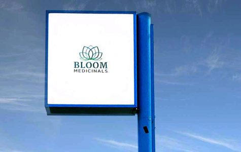 <strong>In addition to selling a range of cannabis products, Bloom Medicinals will also hold informational sessions for patients. Photo provided by Bloom Medicinals.</strong><br>