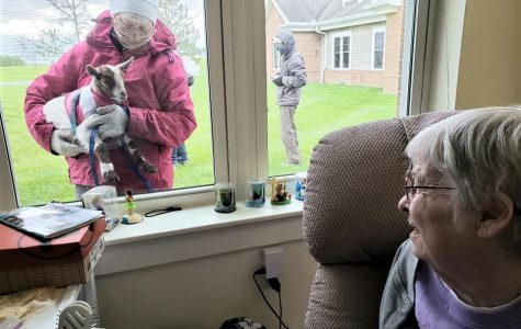 Janyce Isaacs, a resident of the Knolls of Oxford, views a goat through her window, part of a community-initiated project to visit and provide interest and entertainment for the at-risk population during the COVID-19 pandemic. <em>Photo provided by the Knolls of Oxford</em>
