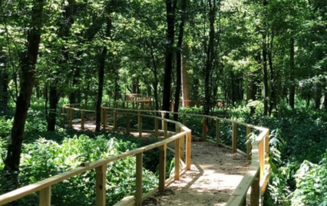 The new boardwalk through Ruder Nature Preserve is wheelchair and stroller accessible.