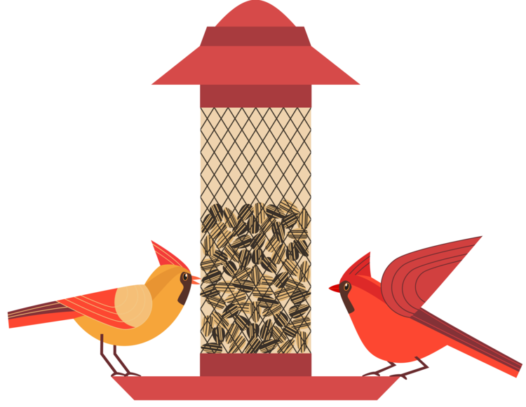 Audubon Miami Valley launches its annual bird seed sale.
