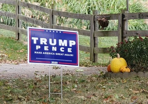 Election yard signs continue to sprout up around town