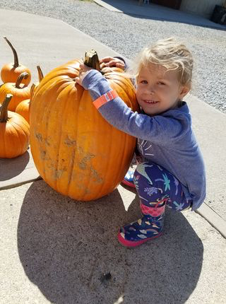 Jane Field's daughter selects a pumpkin at Wendel's Farm