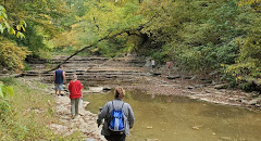 Volunteers search the area where Michael McKenney was last seen at Hueston Woods State Park