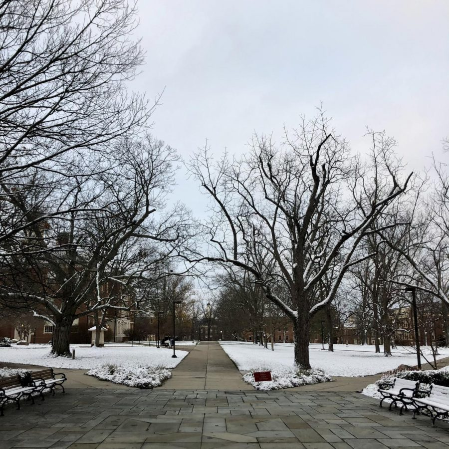 Snow covers the grass but not the walkways outside of King Library on Tuesday morning. Photo by Kayla Kamil