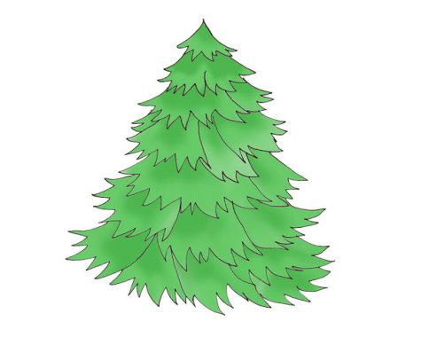 Christmas tree recycling in Oxford starts Dec. 21