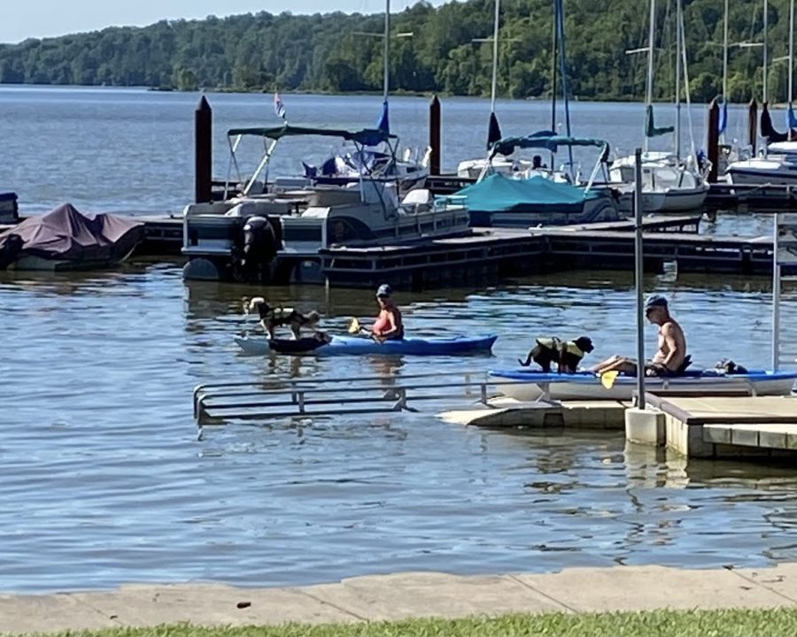 Kayaking, for people and their pets, is among many programs being offered at Hueston Woods State Park this summer.