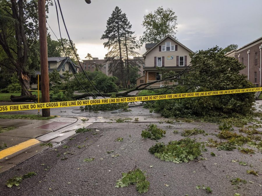 Wind and rain bring a tree crashing down across power lines on South Main Street, Thursday afternoon, blocking the intersection of Main and Wooster Place.
